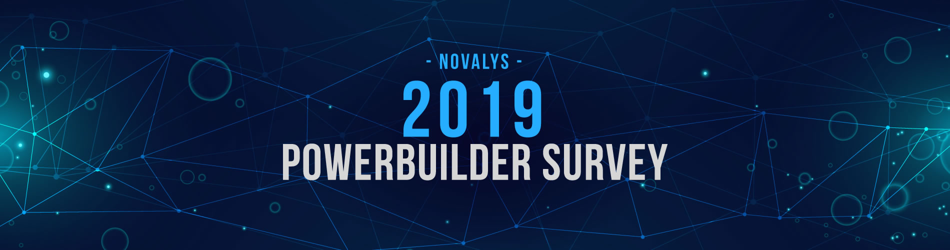 Novalys 2019 PowerBuilder Survey