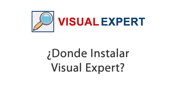 How does Visual Expert works