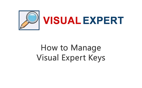 Managing Visual Expert Keys